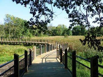 Marsh Boardwalk 2